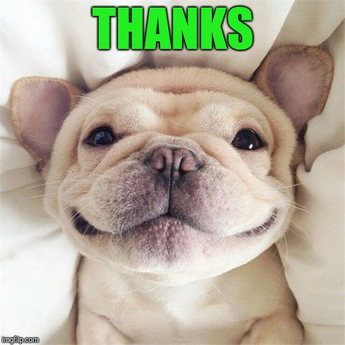Smiling puppy | THANKS | image tagged in smiling puppy | made w/ Imgflip meme maker