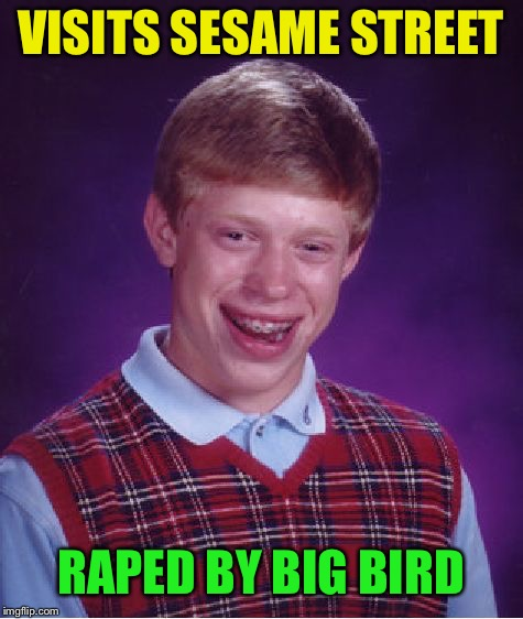 Bad Luck Brian Meme | VISITS SESAME STREET **PED BY BIG BIRD | image tagged in memes,bad luck brian | made w/ Imgflip meme maker