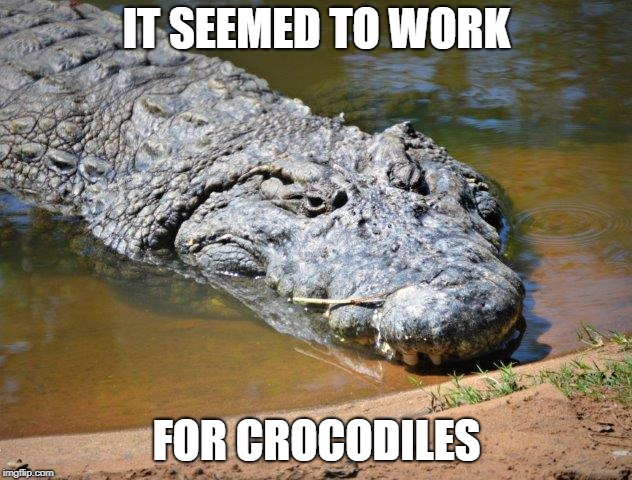 Crocodile | IT SEEMED TO WORK FOR CROCODILES | image tagged in crocodile | made w/ Imgflip meme maker