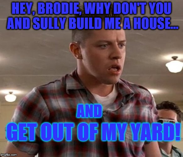 Young Biff | HEY, BRODIE, WHY DON'T YOU AND SULLY BUILD ME A HOUSE... AND GET OUT OF MY YARD! | image tagged in young biff | made w/ Imgflip meme maker