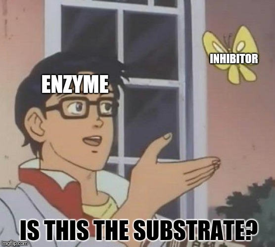 Is This A Pigeon Meme | ENZYME INHIBITOR IS THIS THE SUBSTRATE? | image tagged in memes,is this a pigeon | made w/ Imgflip meme maker
