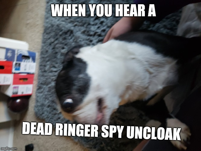 Damn Dead Ringer spies! | WHEN YOU HEAR A DEAD RINGER SPY UNCLOAK | image tagged in tf2,spy | made w/ Imgflip meme maker