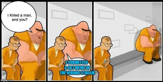prisoners blank | I SUBMITTED A CAT MEME IN THE WRONG STREAM | image tagged in prisoners blank | made w/ Imgflip meme maker