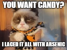 Grumpy Cat Halloween Meme | YOU WANT CANDY? I LACED IT ALL WITH ARSENIC | image tagged in memes,grumpy cat halloween,grumpy cat | made w/ Imgflip meme maker