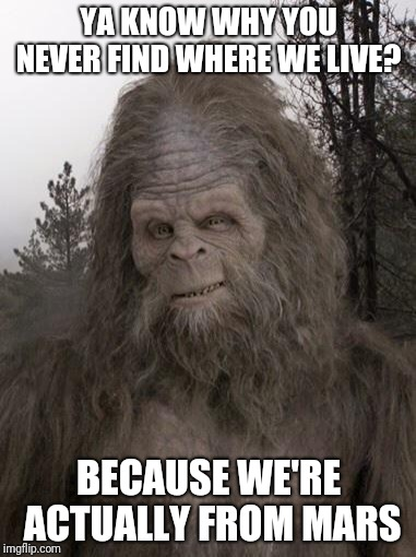 Sasquatch | YA KNOW WHY YOU NEVER FIND WHERE WE LIVE? BECAUSE WE'RE ACTUALLY FROM MARS | image tagged in sasquatch | made w/ Imgflip meme maker