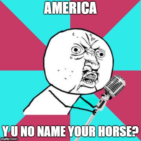 Y U No Music Mic | AMERICA Y U NO NAME YOUR HORSE? | image tagged in y u no music mic | made w/ Imgflip meme maker