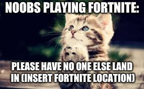 Noobs playing Fortnite | NOOBS PLAYING FORTNITE: PLEASE HAVE NO ONE ELSE LAND IN (INSERT FORTNITE LOCATION) | image tagged in memes,prayer cat,noobs,fortnite,please have no one else land here,funny | made w/ Imgflip meme maker