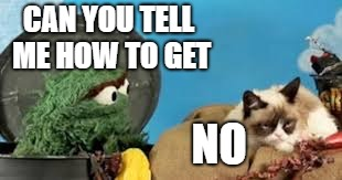 Oscar meets Grumpy | CAN YOU TELL ME HOW TO GET NO | image tagged in oscar the grouch,grumpy cat | made w/ Imgflip meme maker