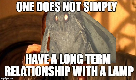 My first moth meme | ONE DOES NOT SIMPLY HAVE A LONG TERM RELATIONSHIP WITH A LAMP | image tagged in moth,i love lamp,one does not simply | made w/ Imgflip meme maker