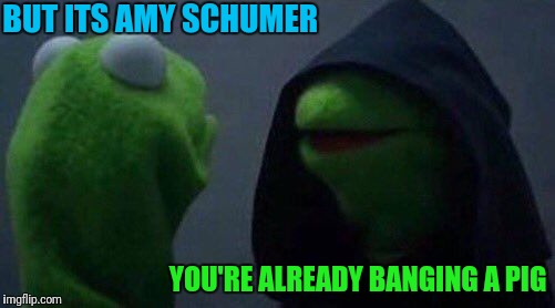kermit me to me | BUT ITS AMY SCHUMER YOU'RE ALREADY BANGING A PIG | image tagged in kermit me to me | made w/ Imgflip meme maker