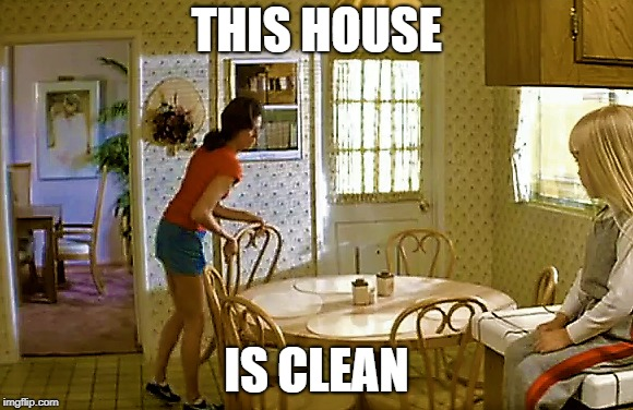 Mrs. Freeling Spirit Animal | THIS HOUSE IS CLEAN | image tagged in poltergeist,housewife,cleaning | made w/ Imgflip meme maker