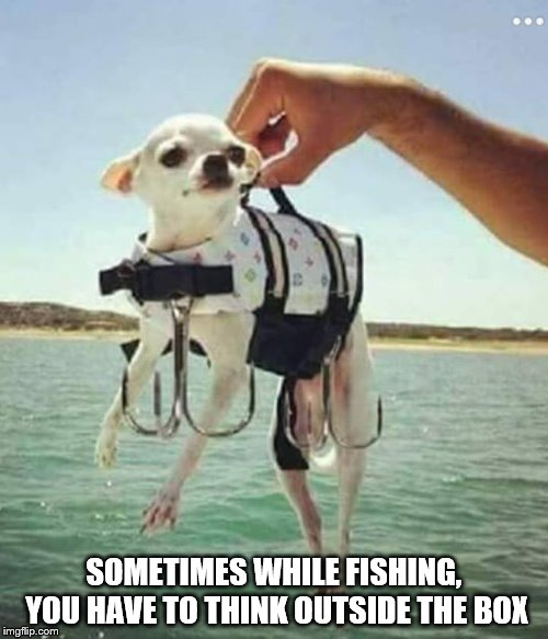 SOMETIMES WHILE FISHING, YOU HAVE TO THINK OUTSIDE THE BOX | image tagged in fishing | made w/ Imgflip meme maker