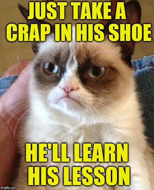 Grumpy Cat Meme | JUST TAKE A CRAP IN HIS SHOE HE'LL LEARN HIS LESSON | image tagged in memes,grumpy cat | made w/ Imgflip meme maker