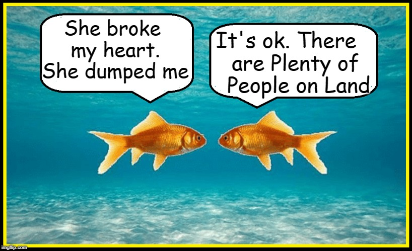 A Friend Tries to Help |  It's ok. There   are Plenty of    People on Land; She broke my heart. She dumped me | image tagged in vince vance,goldfish,fish,plenty of fish in the sea,koi,breakup | made w/ Imgflip meme maker