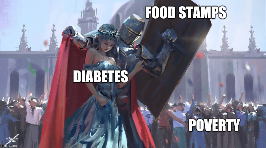Protecting what's important | DIABETES FOOD STAMPS POVERTY | image tagged in knight protecting princess,dieting,diabeetus | made w/ Imgflip meme maker