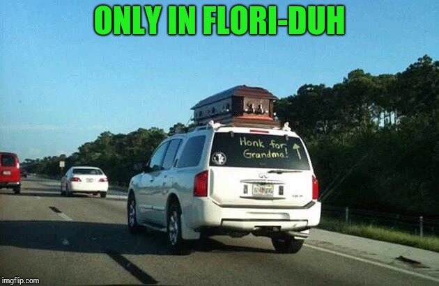 "The ""Vacation"" movie comes to mind 