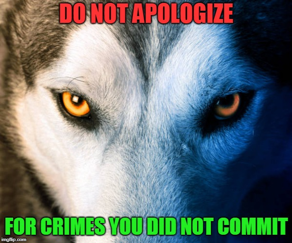 Not Guilty | DO NOT APOLOGIZE FOR CRIMES YOU DID NOT COMMIT | image tagged in truth,pride,dignity | made w/ Imgflip meme maker