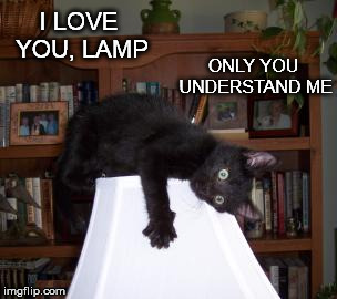 I LOVE YOU, LAMP ONLY YOU UNDERSTAND ME | made w/ Imgflip meme maker