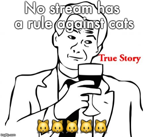 True Story Meme | No stream has a rule against cats  | image tagged in memes,true story | made w/ Imgflip meme maker