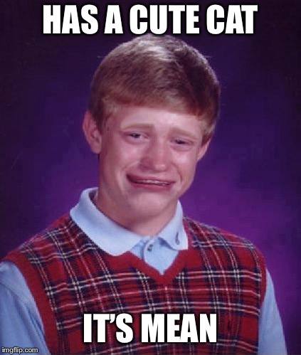 Bad Luck Brian Cry | HAS A CUTE CAT IT'S MEAN | image tagged in bad luck brian cry | made w/ Imgflip meme maker