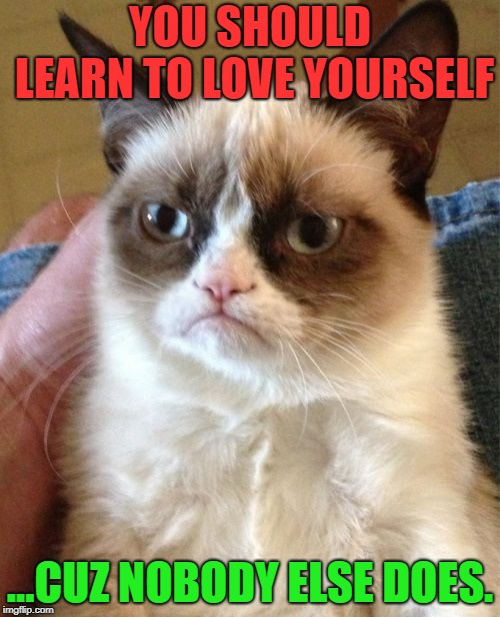 Grumpy Cat | YOU SHOULD LEARN TO LOVE YOURSELF ...CUZ NOBODY ELSE DOES. | image tagged in memes,grumpy cat,first world problems,funny,funny memes,grumpy | made w/ Imgflip meme maker