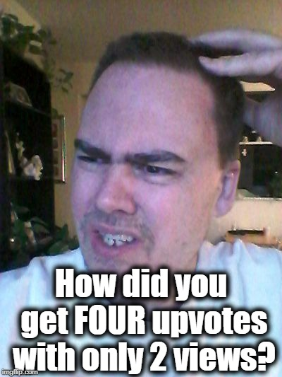 indecisive | How did you get FOUR upvotes with only 2 views? | image tagged in indecisive | made w/ Imgflip meme maker