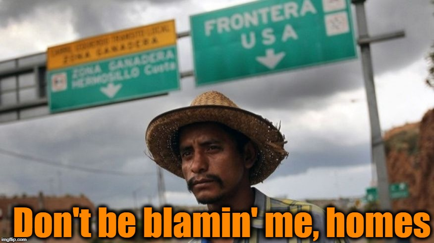 Don't be blamin' me, homes | made w/ Imgflip meme maker