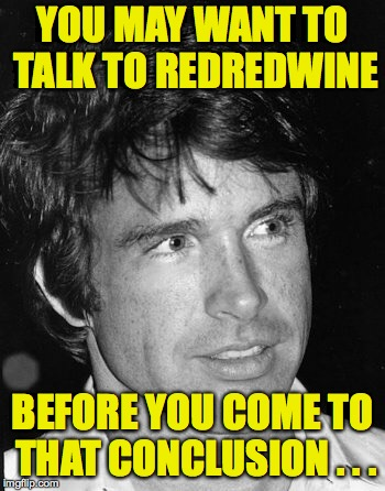YOU MAY WANT TO TALK TO REDREDWINE BEFORE YOU COME TO THAT CONCLUSION . . . | made w/ Imgflip meme maker