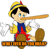 Pinnochio | WHAT EVER DO YOU MEAN? | image tagged in pinnochio | made w/ Imgflip meme maker