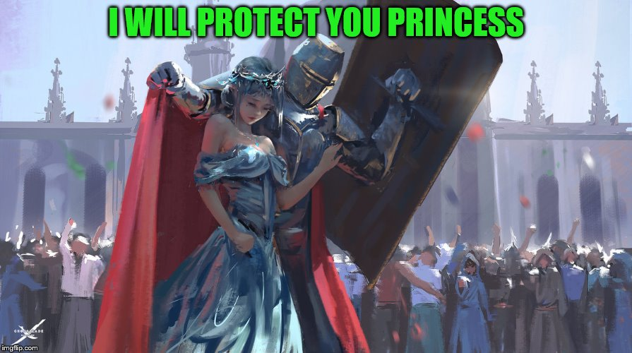 Knight Protecting Princess | I WILL PROTECT YOU PRINCESS | image tagged in knight protecting princess | made w/ Imgflip meme maker