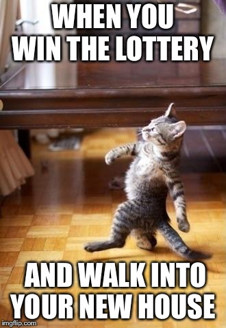 Cool Cat Stroll | WHEN YOU WIN THE LOTTERY AND WALK INTO YOUR NEW HOUSE | image tagged in memes,cool cat stroll | made w/ Imgflip meme maker