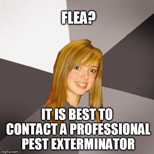 Flea turns 56 today | FLEA? IT IS BEST TO CONTACT A PROFESSIONAL PEST EXTERMINATOR | image tagged in memes,musically oblivious 8th grader,red hot chili peppers,happy birthday,music | made w/ Imgflip meme maker