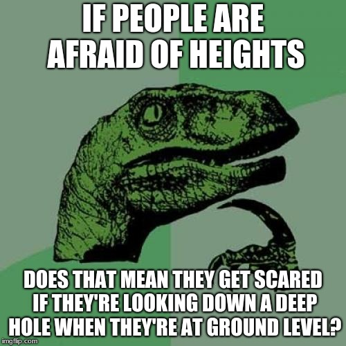 Philosoraptor | IF PEOPLE ARE AFRAID OF HEIGHTS DOES THAT MEAN THEY GET SCARED IF THEY'RE LOOKING DOWN A DEEP HOLE WHEN THEY'RE AT GROUND LEVEL? | image tagged in memes,philosoraptor | made w/ Imgflip meme maker