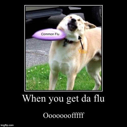 When You Get Da Flu Imgflip