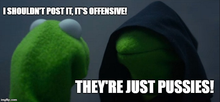 My decision making process pertaining to my darker memes. |  I SHOULDN'T POST IT, IT'S OFFENSIVE! THEY'RE JUST PUSSIES! | image tagged in memes,evil kermit,my meme | made w/ Imgflip meme maker