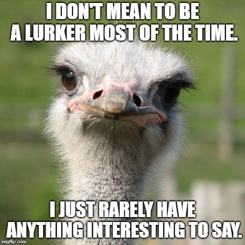 Introducing Honest Ostrich