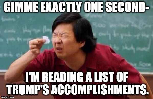 A List So Small, It's Non-Existent |  GIMME EXACTLY ONE SECOND-; I'M READING A LIST OF TRUMP'S ACCOMPLISHMENTS. | image tagged in small list,donald trump,potus,traitor,treason,failure | made w/ Imgflip meme maker