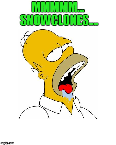 Homer Simpson Drooling | MMMMM... SNOWCLONES.... | image tagged in homer simpson drooling | made w/ Imgflip meme maker