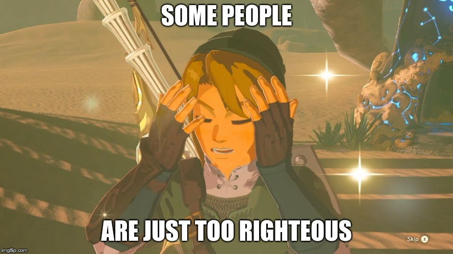 Link WTF | SOME PEOPLE ARE JUST TOO RIGHTEOUS | image tagged in link wtf | made w/ Imgflip meme maker