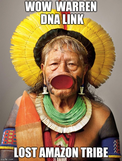 Warren DNA Link | WOW  WARREN DNA LINK LOST AMAZON TRIBE | image tagged in dna,tribe | made w/ Imgflip meme maker