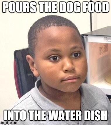 Minor Mistake Marvin | POURS THE DOG FOOD INTO THE WATER DISH | image tagged in memes,minor mistake marvin | made w/ Imgflip meme maker