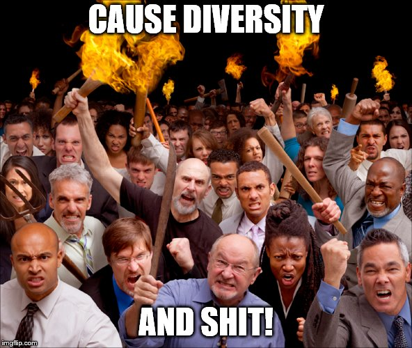 CAUSE DIVERSITY AND SHIT! | image tagged in diversity,pc | made w/ Imgflip meme maker