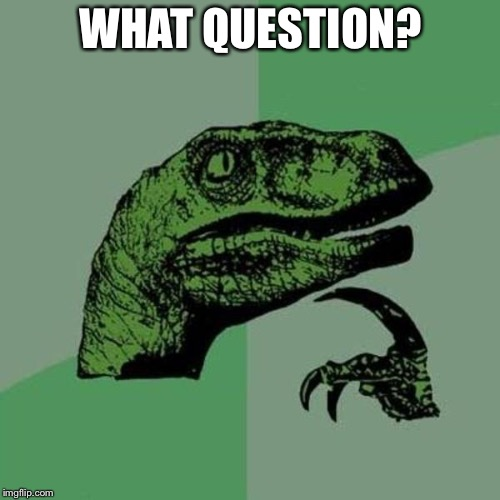 raptor | WHAT QUESTION? | image tagged in raptor | made w/ Imgflip meme maker