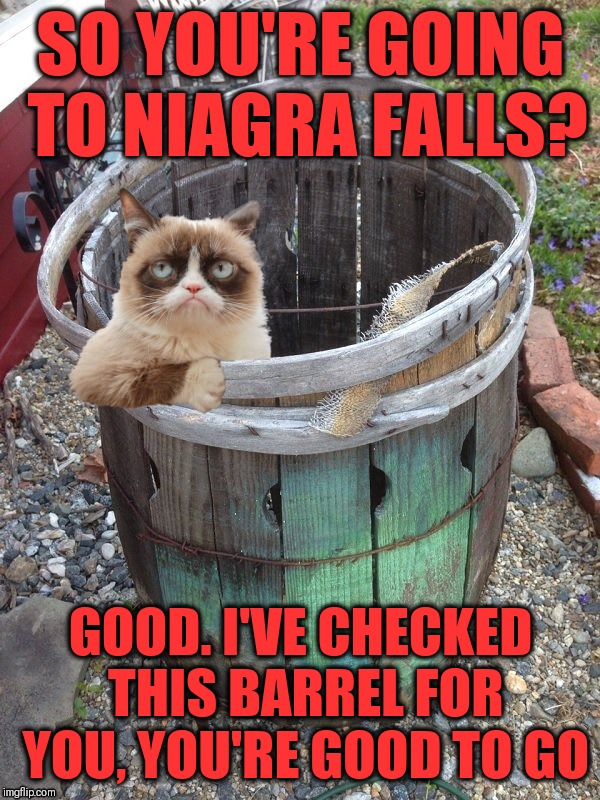Roll out the barrel they said.  It will be fun they said. | SO YOU'RE GOING TO NIAGRA FALLS? GOOD. I'VE CHECKED THIS BARREL FOR YOU, YOU'RE GOOD TO GO | image tagged in grumpy cat barrel,niagra falls,new york,ontario,maid of the mist,it will be fun they said | made w/ Imgflip meme maker