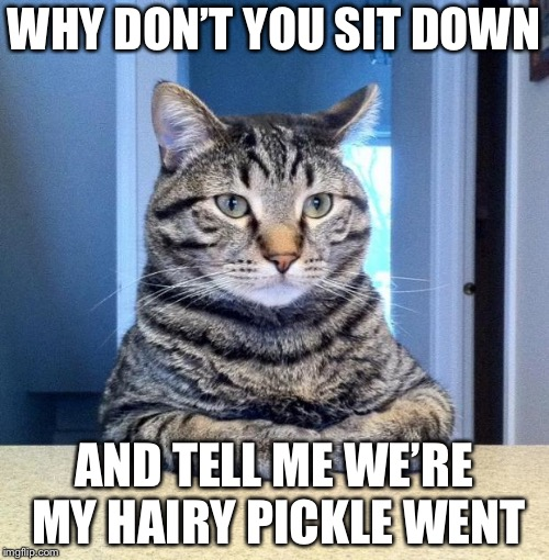 Serious Cat | WHY DON'T YOU SIT DOWN AND TELL ME WE'RE MY HAIRY PICKLE WENT | image tagged in serious cat | made w/ Imgflip meme maker