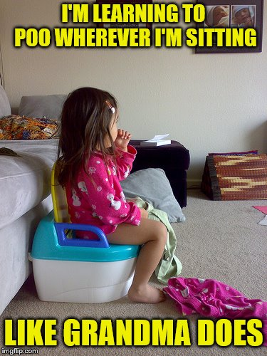 And not miss her shows. | I'M LEARNING TO POO WHEREVER I'M SITTING LIKE GRANDMA DOES | image tagged in memes,pooping,potty,grandma,little girl | made w/ Imgflip meme maker