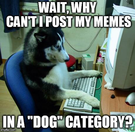 "I Have No Idea What I Am Doing | WAIT, WHY CAN'T I POST MY MEMES IN A ""DOG"" CATEGORY? 