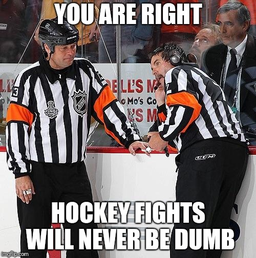 Hockey Referee  | YOU ARE RIGHT HOCKEY FIGHTS WILL NEVER BE DUMB | image tagged in hockey referee | made w/ Imgflip meme maker