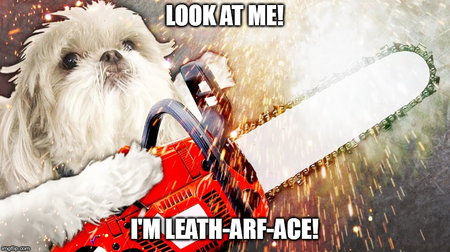 Quote from the movie 'Summer School' | LOOK AT ME! I'M LEATH-ARF-ACE! | image tagged in memes,leatherface,dog pun | made w/ Imgflip meme maker