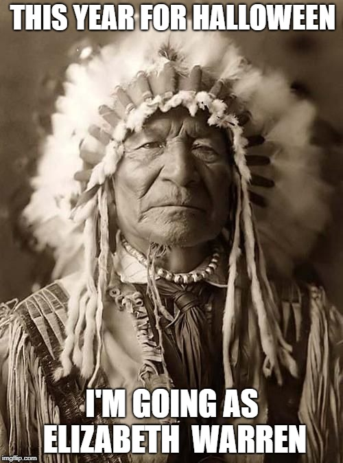 Elizabeth Warren. | THIS YEAR FOR HALLOWEEN I'M GOING AS ELIZABETH  WARREN | image tagged in wise indian,halloween,halloween costume,cowboys and indians,indian | made w/ Imgflip meme maker